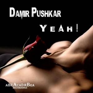 Damir Pushkar - Yeah ! [Abracadabra Recordings]