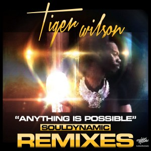 Tiger Wilson - Anything Is Possible (Souldynamic Remixes) [Makin Moves]