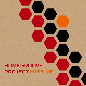 Homegroove Project - Miss Me [Balanced Records]
