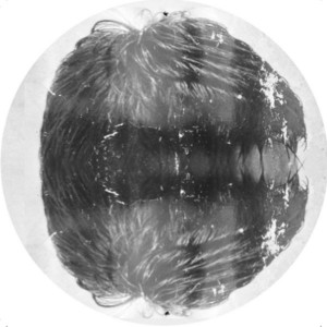 Ishmael - WOLFEP026 [Wolf Music Recordings]