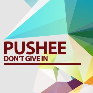 Pushee - Don't Give In [Toolbox House]