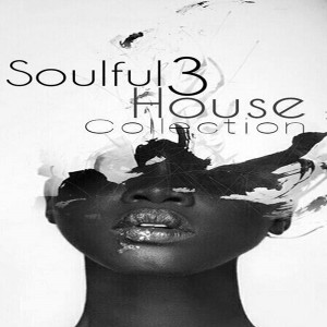 Various - Soulful House Collection Vol 3 [Perception Music]