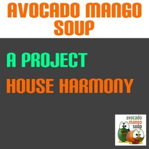 A Project - House Harmony [Avocado Mango Soup]