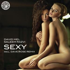 David Mel & Saleem Razvi - Sexy [Tiger Records]