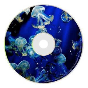 Farzan Badie - Black & Blue EP [Bedroomrecords09]