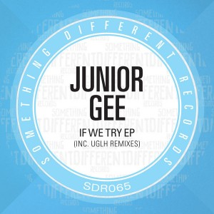Junior Gee - If We Try EP [Something Different Records]