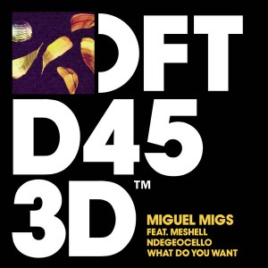 Miguel Migs feat. Meshell Ndegeocello - What Do You Want [Defected]