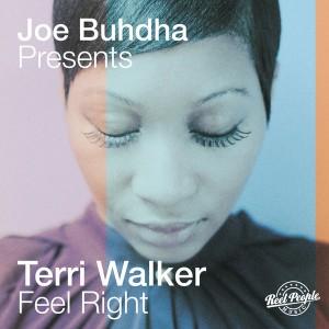 Joe Buhdha pres. Terri Walker - Feel Right [Reel People Music]