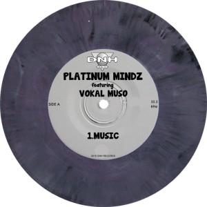 Platinum Mindz feat, Vokal Muso - Music [DNH]