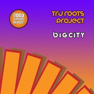 Tru Roots Project - Big City [Good Voodoo Music]