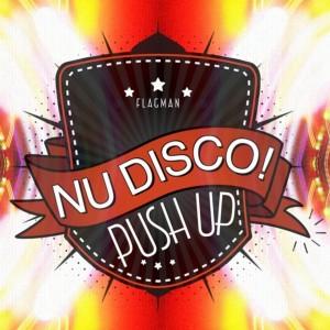 Various Artists - Push Up Nu Disco! [Flagman]