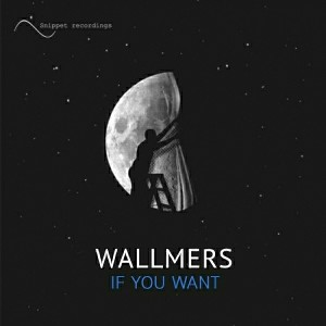 Wallmers - If You Want [Snippet recordings]