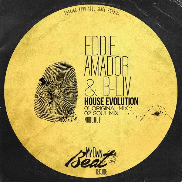 Essential music b liv eddie amador house evolution for Eddie amador house music