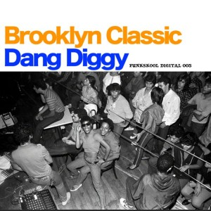Brooklyn Classic - Dang Diggy [Funkskool Digital]