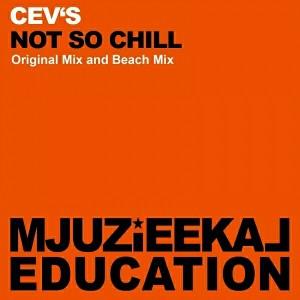 CEV's - Not So Chill [Mjuzieekal Education Digital]
