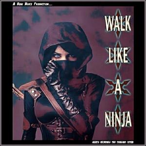 Remi Nisce - Walk Like a Ninja [Selekta Recordings]