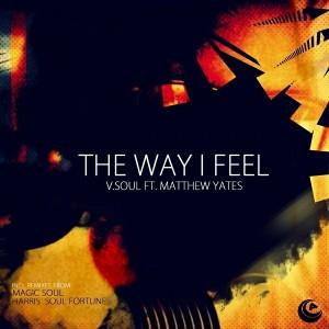 V.Soul feat. Matthew Yates - The Way I Feel [Audiophile Music]