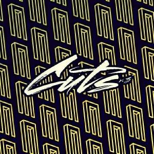 Various Artists - DJ Sneak presents Magnetic Cuts v.3 [Magnetic Recordings]