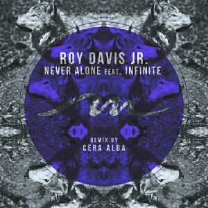 Roy Davis Jr. feat. Infinite - Never Alone [Mile End Records]