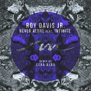 Roy Davis Jr. feat. Infinite - Never Alone [Mile End Records]