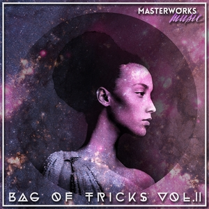 Various - Bag Of Tricks Vol 2 [Masterworks Music]