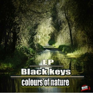 Black Keys - Colours of Nature EP [WitDJ Productions PTY LTD]