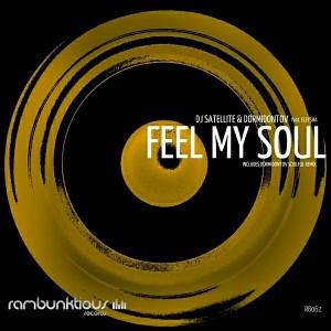 DJ Satellite & Dormidontov feat. Eleysha - Feel My Soul [RaMBunktious (Miami)]
