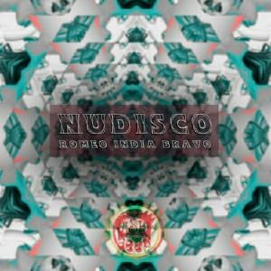 Nudisco - Romeo India Bravo [Dash Deep Records]
