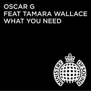 Oscar G feat. Tamara Wallace - What You Need (Denney Remix) [Ministry of Sound Recordings LTD]