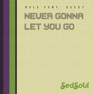 Ryle - Never Gonna Let You Go [Sedsoul]