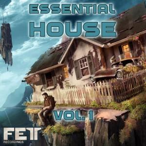 Various Artists - Essential House, Vol. 1 [Fett Recordings]
