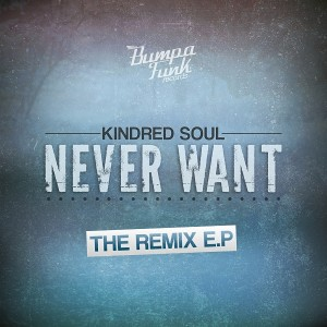Various Artists - Never Want - Remixes [Bumpa Funk Records]