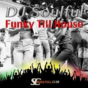 DJ Soulful - Funky Till House [Soulfull Club]