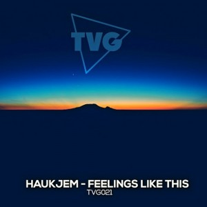 Haukjem - Feelings Like This (Radio Edit) [The Vibe Guide]