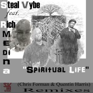 Steal Vybe feat. Rich Medina - Spiritual Life [Steal Vybe]