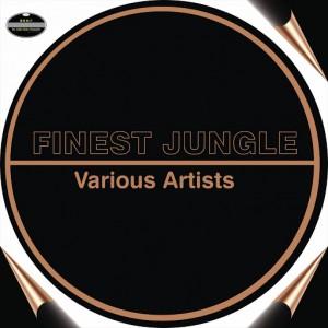Tour Masters, DJ Gibbz - Finest Jungle [BGMP Records]