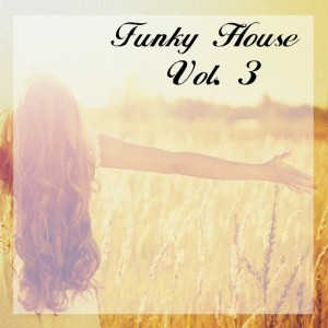 Various Artists - Funky House, Vol. 3 [Funky Green]