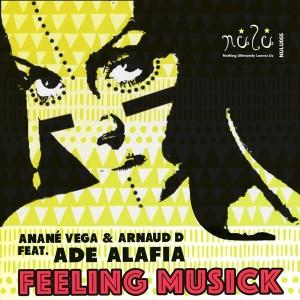 Anane & Arnaud D Feat. Ade Alafia - Feeling Musick [Nulu]