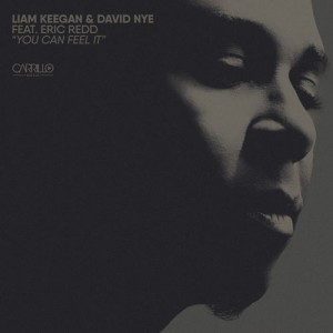 Liam Keegan, David Nye, Eric Redd - You Can Feel It [Carrillo Music LLC]