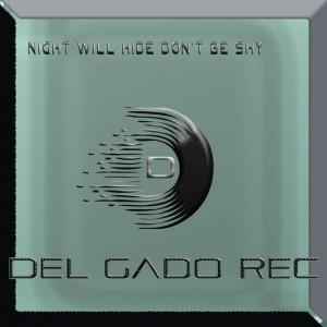 Paul V feat. Leizah - Night Will Hide Don't Be Shy [Del Gado Rec]