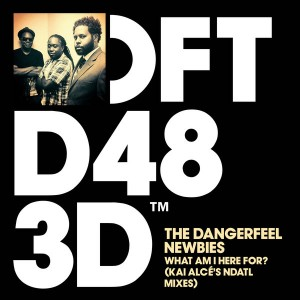 The DangerFeel Newbies - What Am I Here For! (Kai Alcé's NDATL Remixes) [Defected]