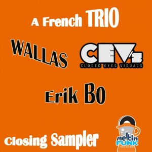 Various Artists - CEV's & Wallas & Erik Bo- A French Trio [Meltin Funk Records]