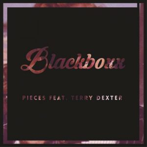 Blackboxx feat. Terry Dexter - Pieces [M.I.RAW Recordings]