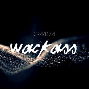 Crazibiza - Wackass [PornoStar Records]