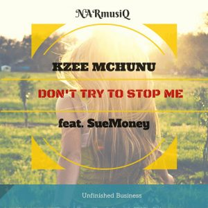 Kzee Mchunu - Don't Try to Stop Me [NARmusiQ]