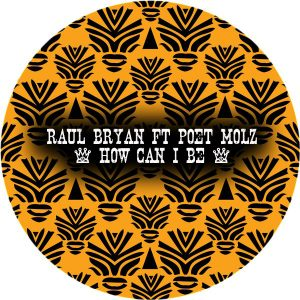 Raul Bryan & Poet Molz - How Can I Be [Afro Rebel Music]
