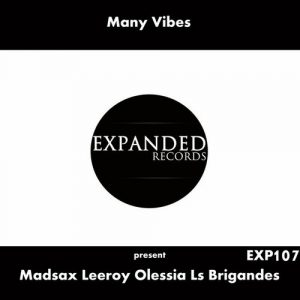 Madsax, Leeroy, Olessia, Ls Brigandes - Many Vibes Present Madsax, Leeroy, Olessia, Ls Brigandes [Expanded Records]