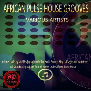 Various Artists - African Pulse House Grooves [African Pulse Music]