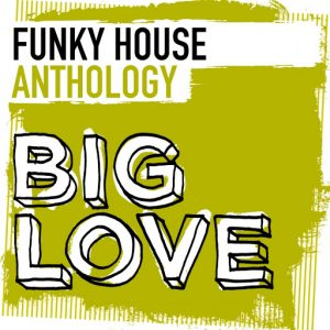 Essential music various artists big love funky house for Funky house songs