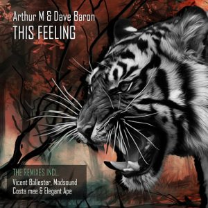 Arthur M, Dave Baron - This Feeling [Deep Strips]